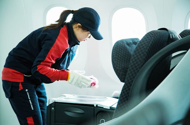 In-flight cleaning business image